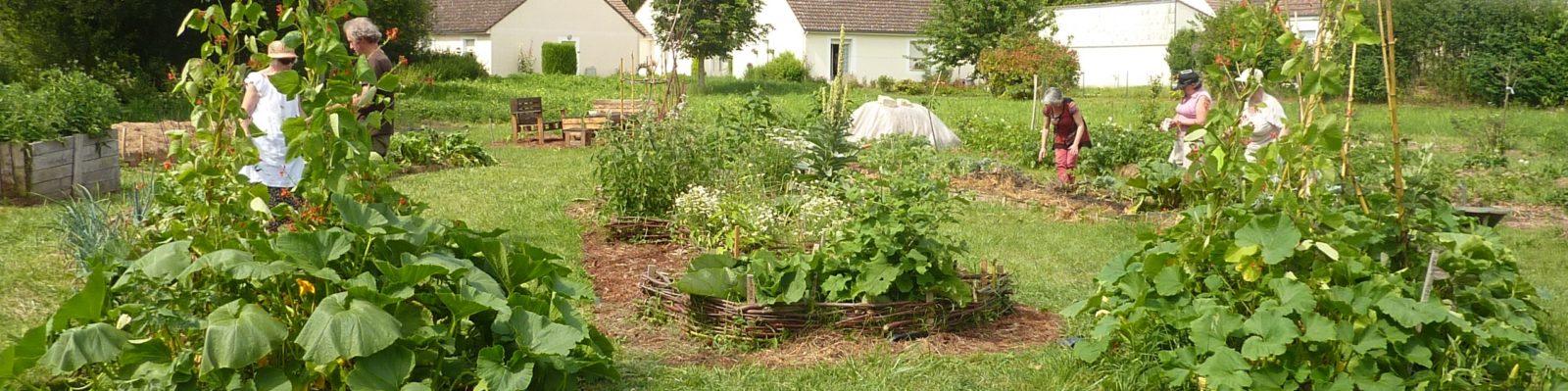 Le jardin partagé et solidaire de Nocé